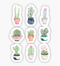 Potted Succulents Sticker