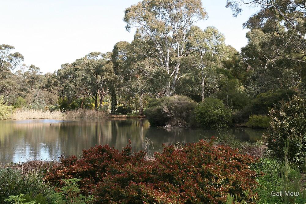 """Wittunga Botanic Park"" by Gail Mew"
