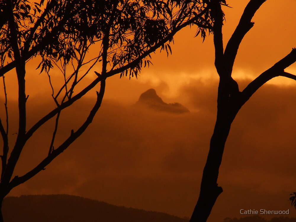 Mt Warning in yellow by Cathie Sherwood