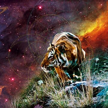 Cosmic Tigerscape by DILLIGAF