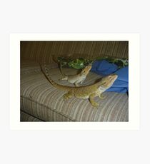 Brother and Sister Bearded Dragons Art Print