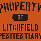 Property Of Litchfield Penitentiary by BenClark