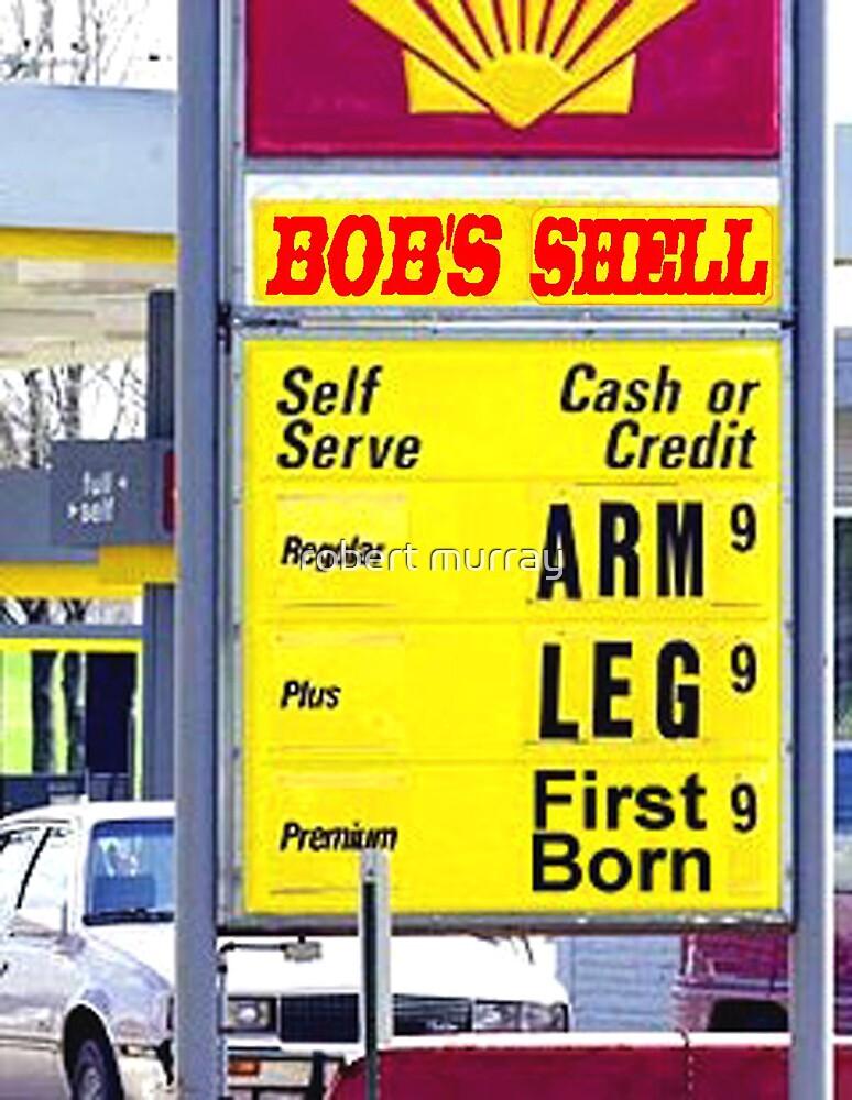 Bob's Shell by robert murray