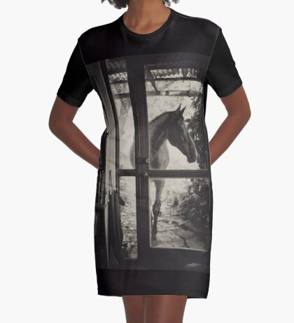 Visitor Graphic T-Shirt Dress