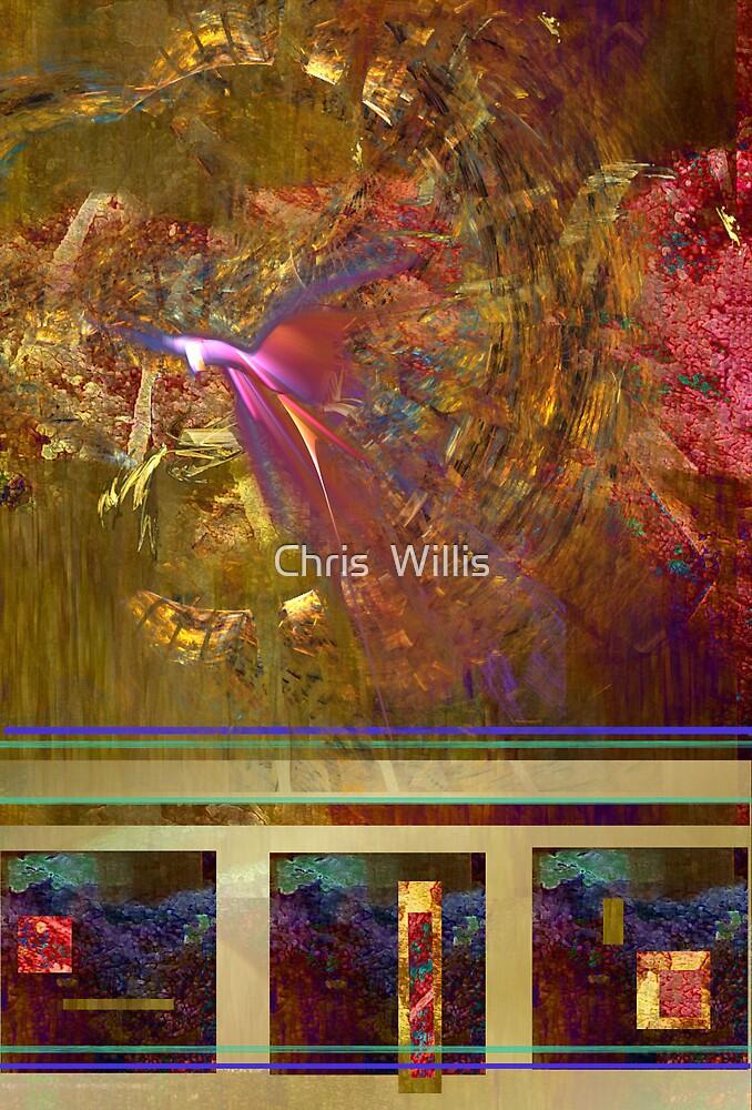 Beginning to Soar by Chris  Willis