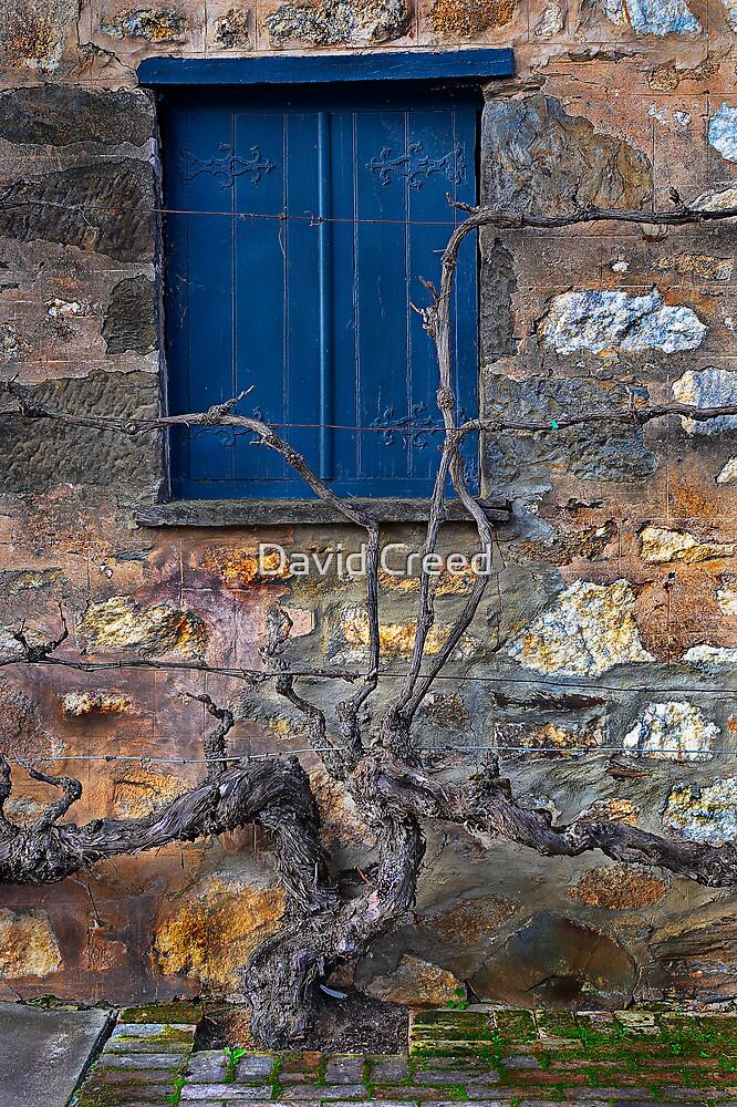 Winery Window by David Creed
