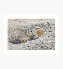 Mr. Crabs Art Print