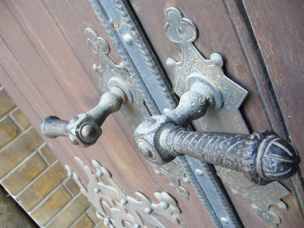 synagogue doors by Natasha Matic