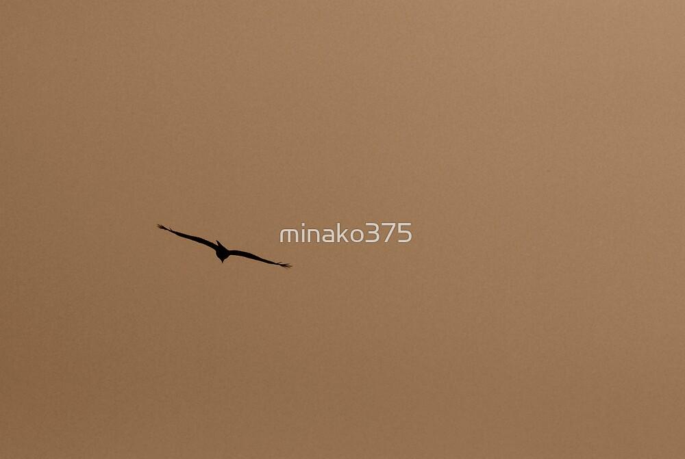 飛行 by minako375