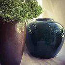 Brown Pot ~ Blue Pot by Barbara Wyeth