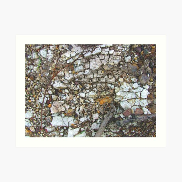 face in  the rock Art Print
