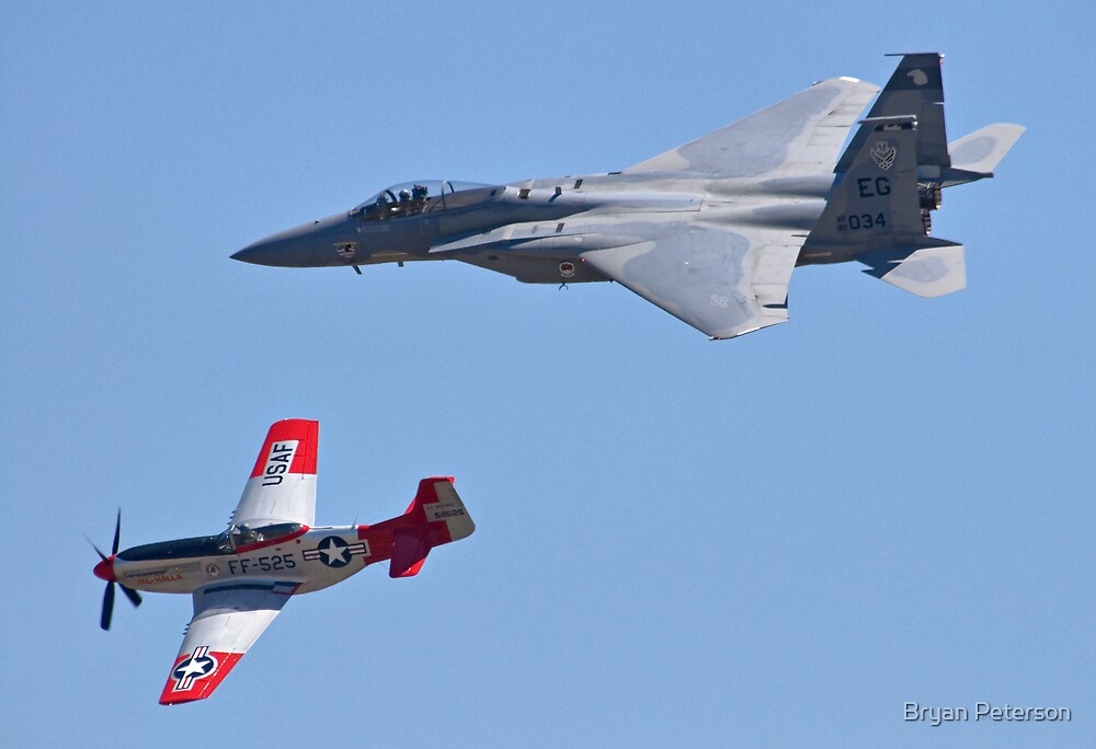 Mustangs and Eagles by Bryan Peterson