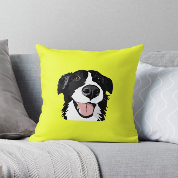 Smiley collie Coussin