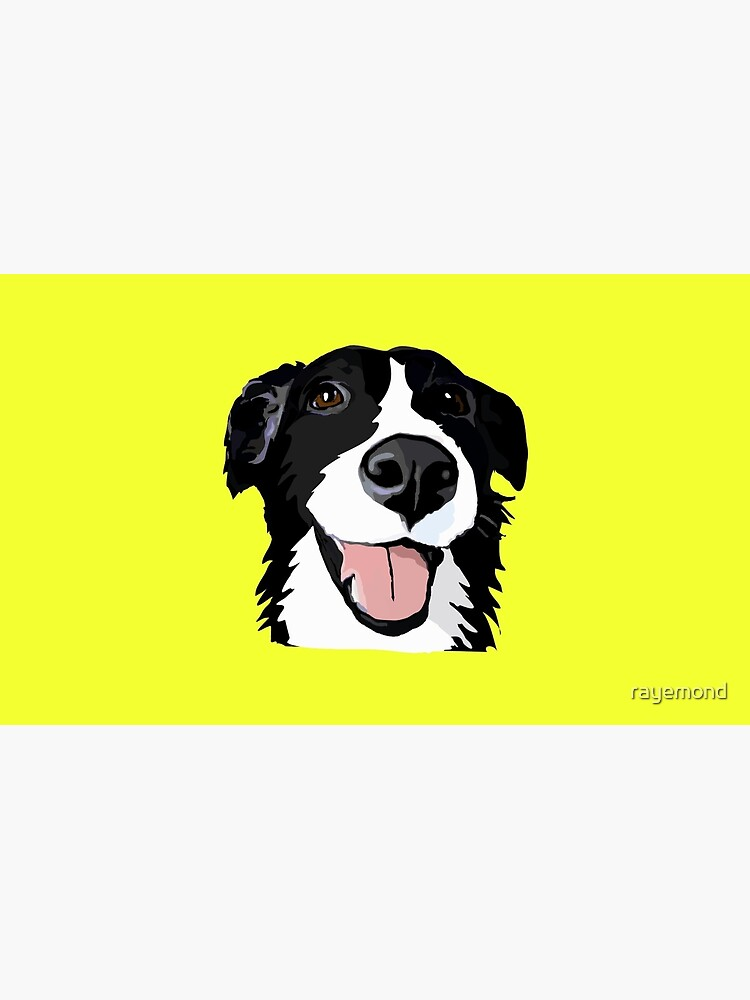 Smiley-Collie von rayemond