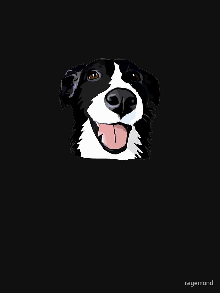 Smiley-Collie von rayemond