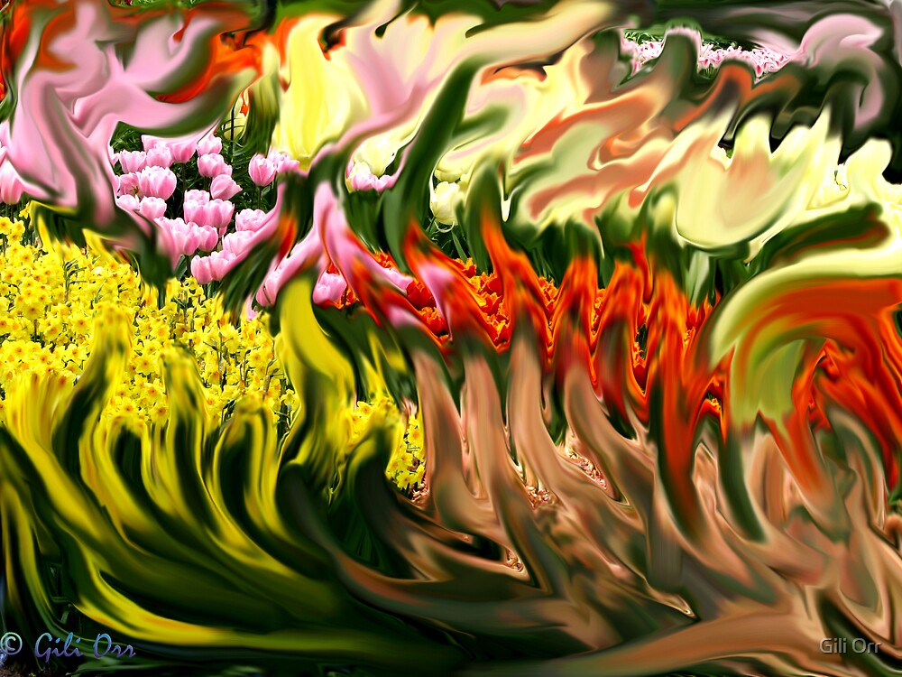 My fabulous flowers by Gili Orr