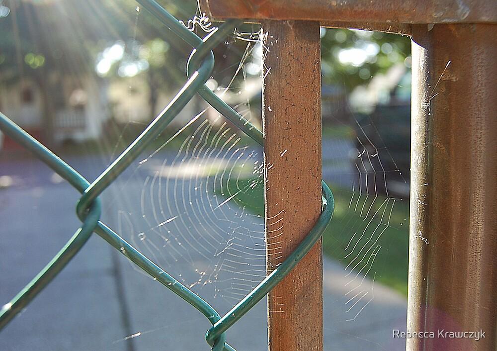 Web by Rebecca Krawczyk