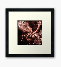TIME AERIALS Squamafly Red Framed Print