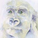 The Evolution Series: P3 by Pat  Elliott