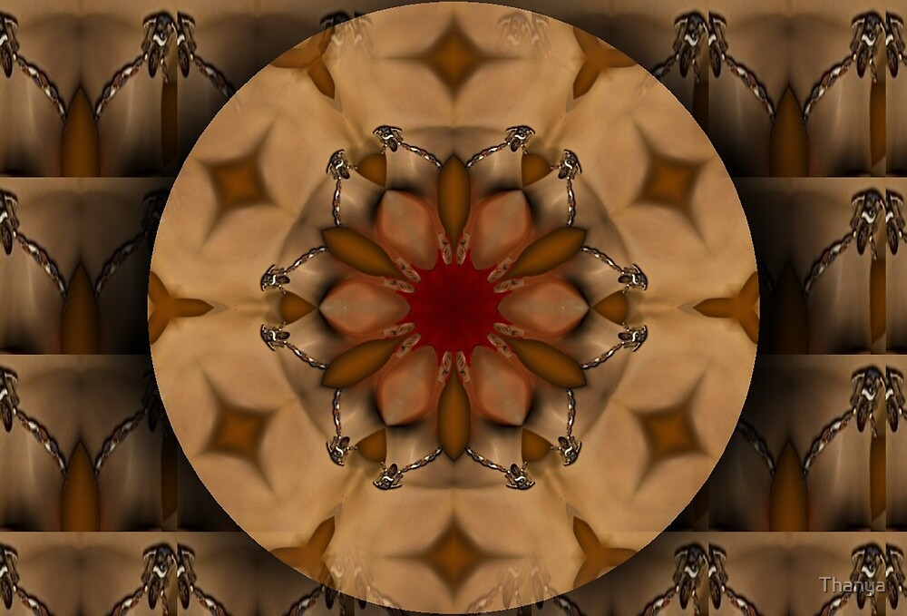 Shympe Mandala by Thanya