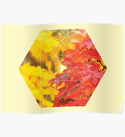 Nature and Geometry - Autumn Leaves Poster