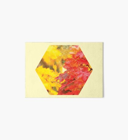 Nature and Geometry - Autumn Leaves Art Board