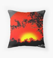 THE BEAUTY OF OUR WORLD Throw Pillow