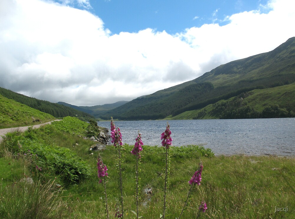 The End of the Road, Strath Conon Scotland by jacqi