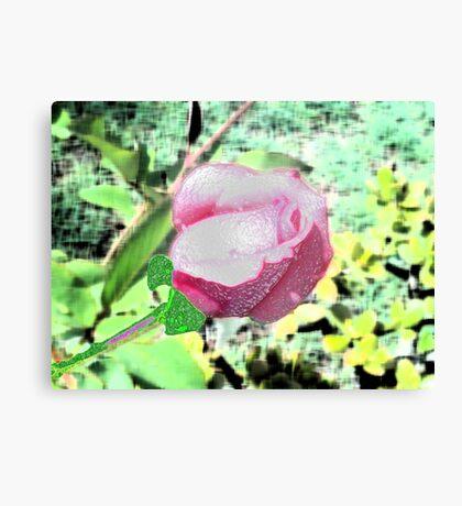 Redone Rose Canvas Print