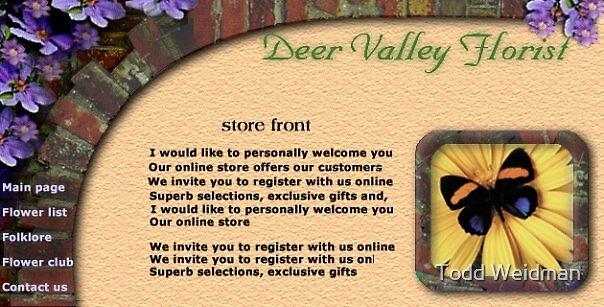 Deer Valley Florist web site concept 2 by Todd Weidman