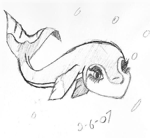 girl fish whale by sketchpad
