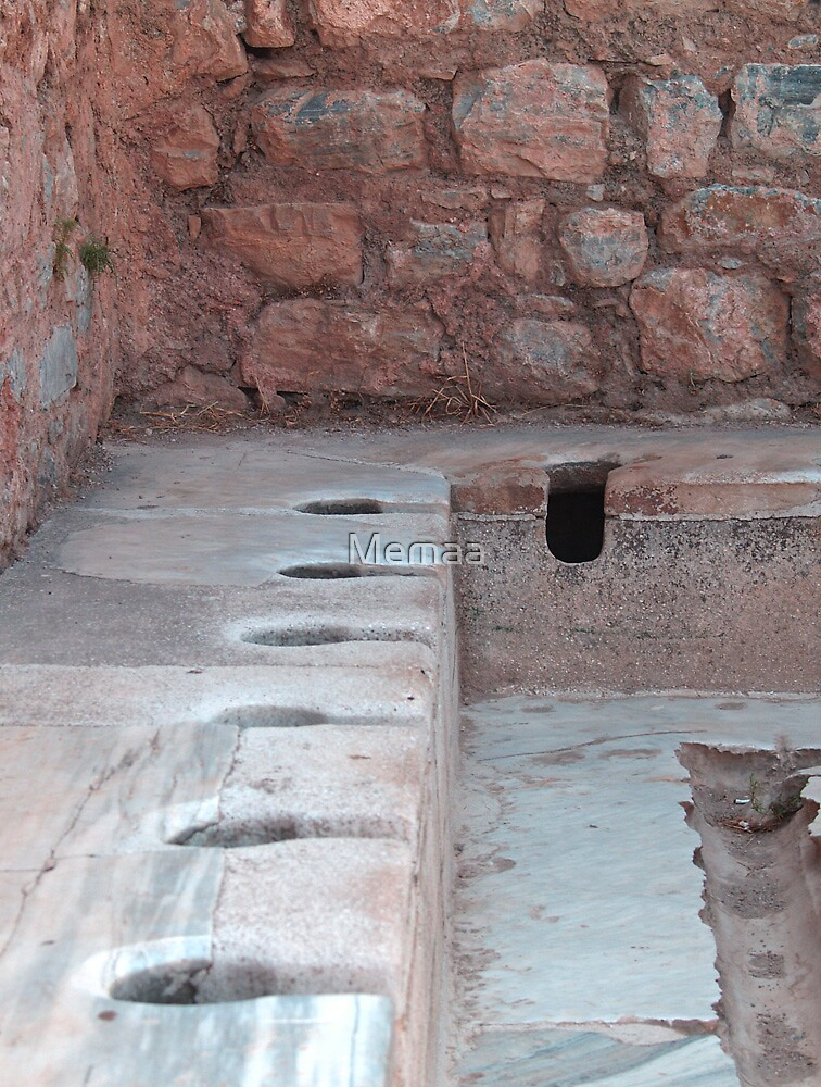 The Roman Communal Commodes in Ephesus by Memaa