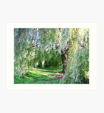 Willow Sanctuary Art Print