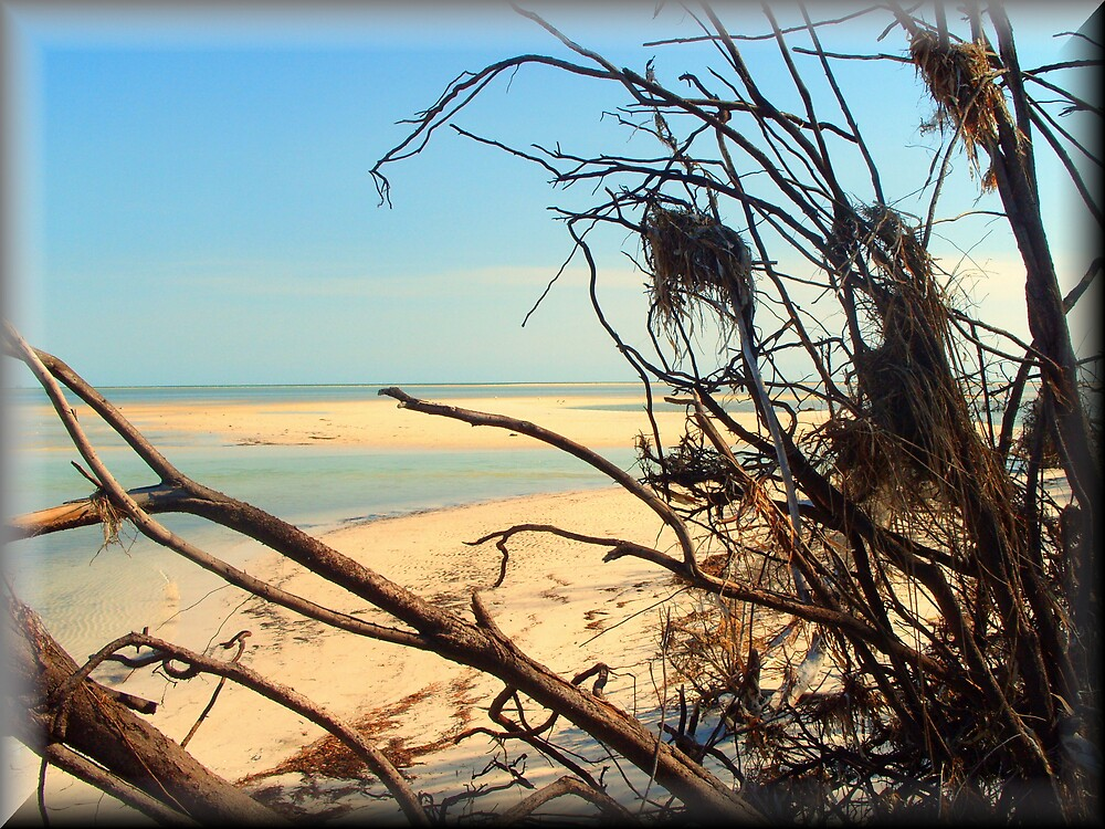 Deserted Island by TerryDavey