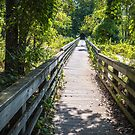 Bay City, MI State Park boardwalk by Tom Causley