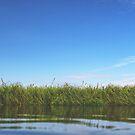 Kayaking von nurmut