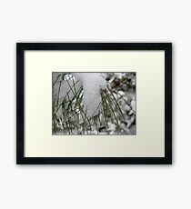 Snow Framed Print