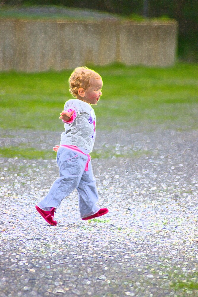 Why did the toddler cross the road by Deidre Cripwell
