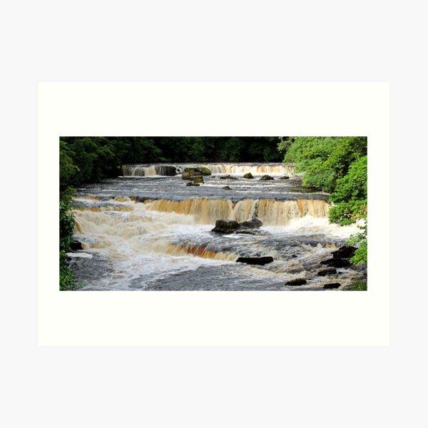 Aysgarth Upper Falls Art Print