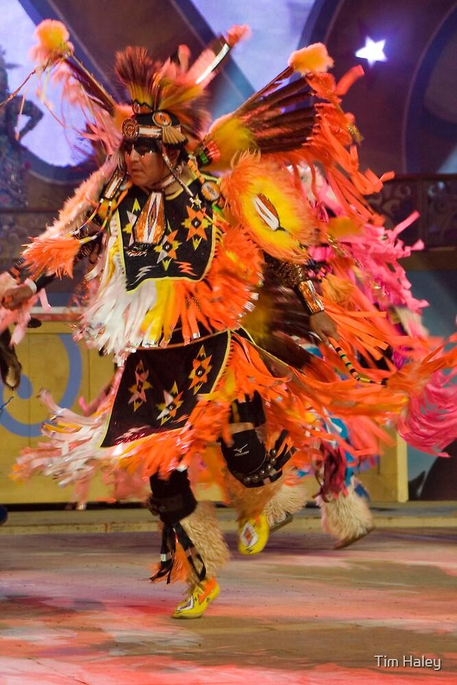 native dancer by Tim Haley