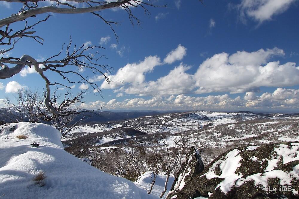icy world by LenitaB