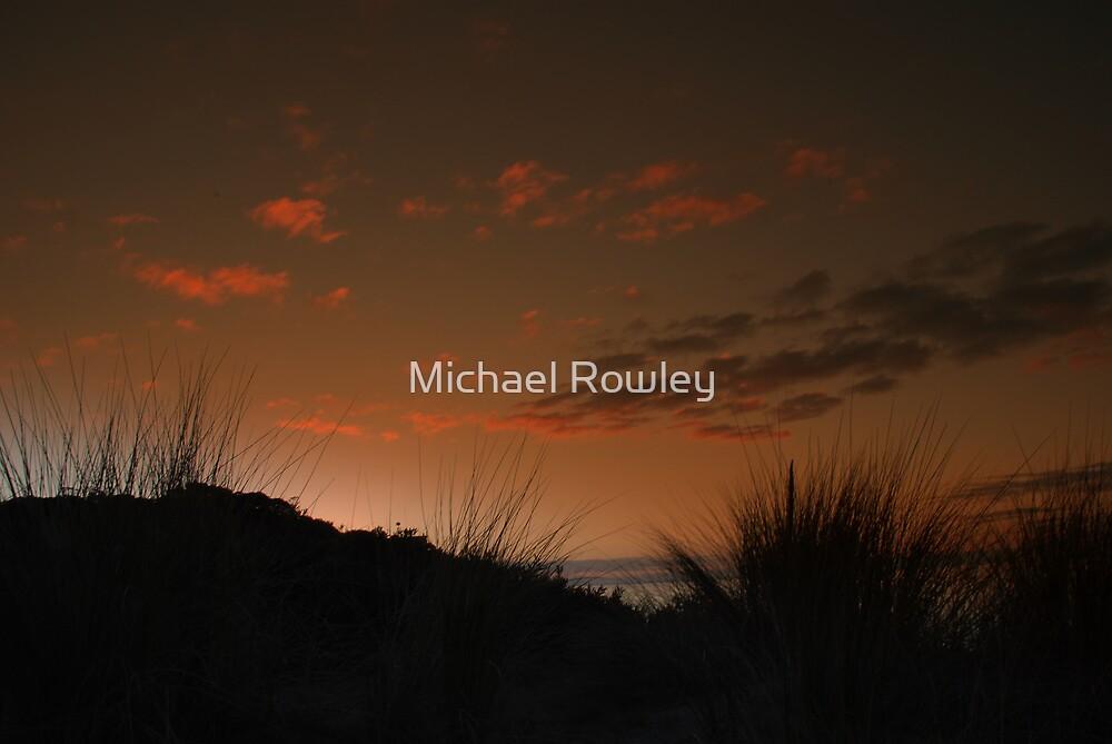 Sunset Coastal Grass by Michael Rowley