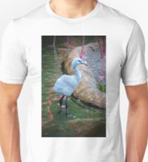 American Flamingo Chick T-Shirt