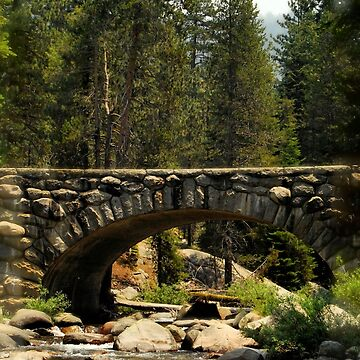 Bridged Beauty by HeavenOnEarth