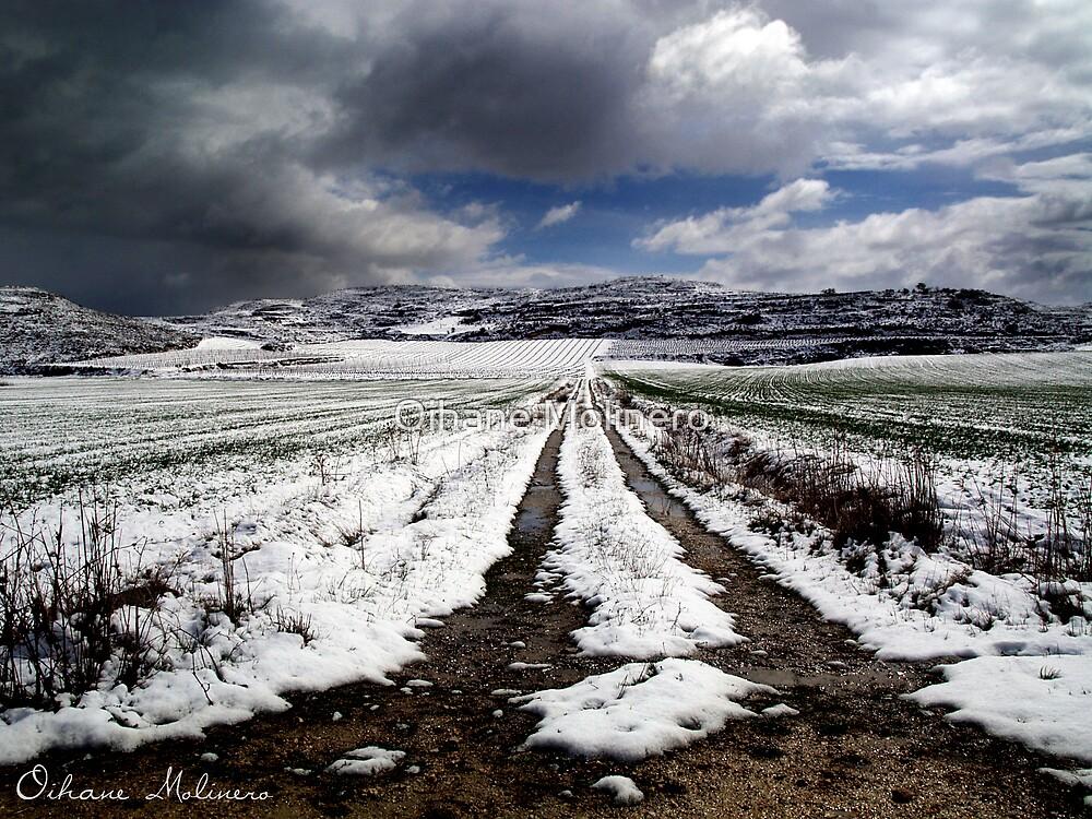 Spring II by Oihane Molinero
