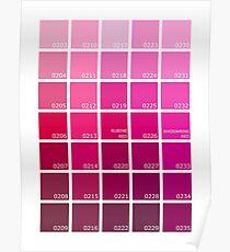 Shades of Pink Pantone Poster