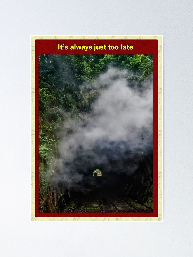 Alternate view of It's always just too late Poster