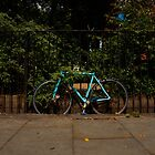 Bicycle by SweetLemon