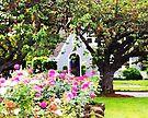 Delightful Garden Cottage and Pink Roses by Melissa J Barrett