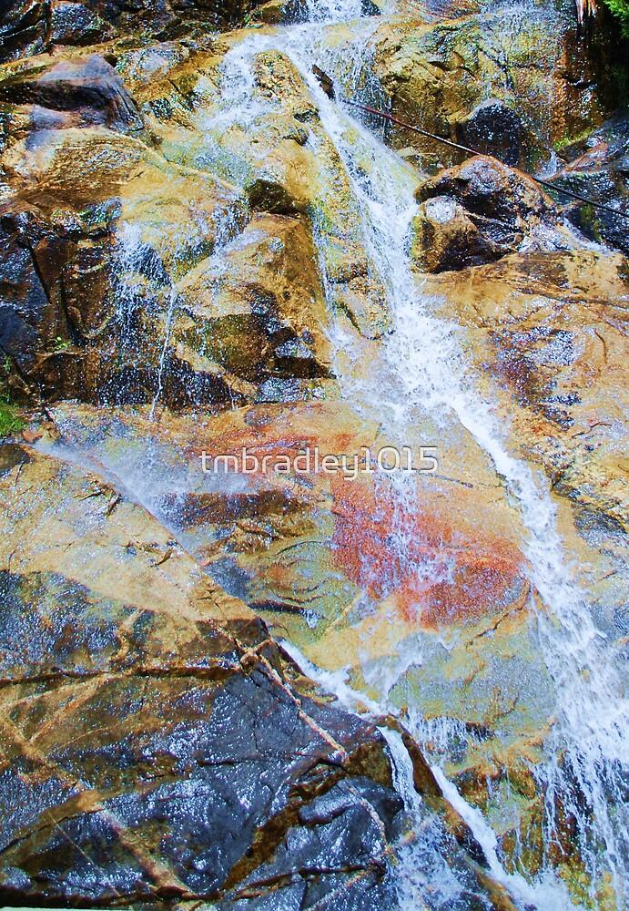 Painted Rocks by tmbradley1015